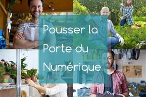 Aude, Consultation Numérique
